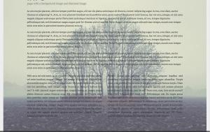 Venti Page